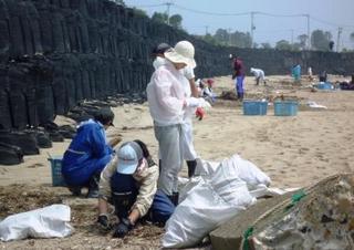 大谷海岸で清掃をする学生達.JPG